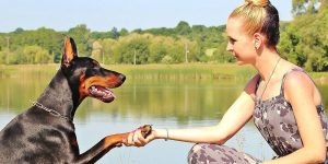 Women-shaking-hand-with-dog